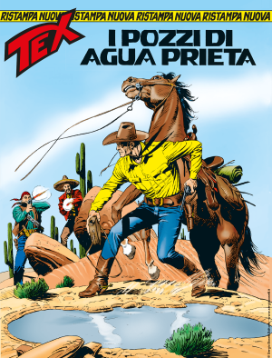I pozzi di Agua Prieta